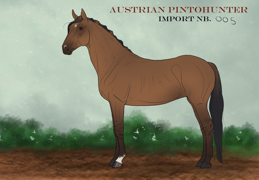 Austrian PintoHunter Import_005|OPEN by CalyArt