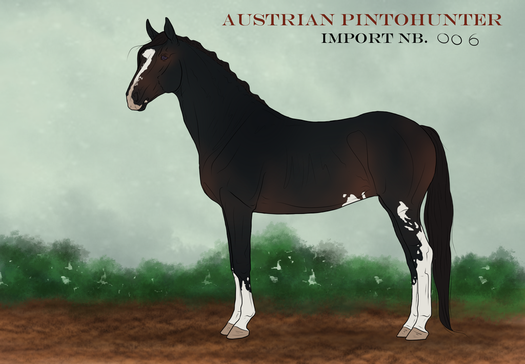 Austrian PintoHunter Import_006|CLOSED by CalyArt