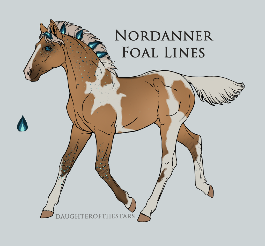 #A1840 -Nordanner Foal by CalyArt