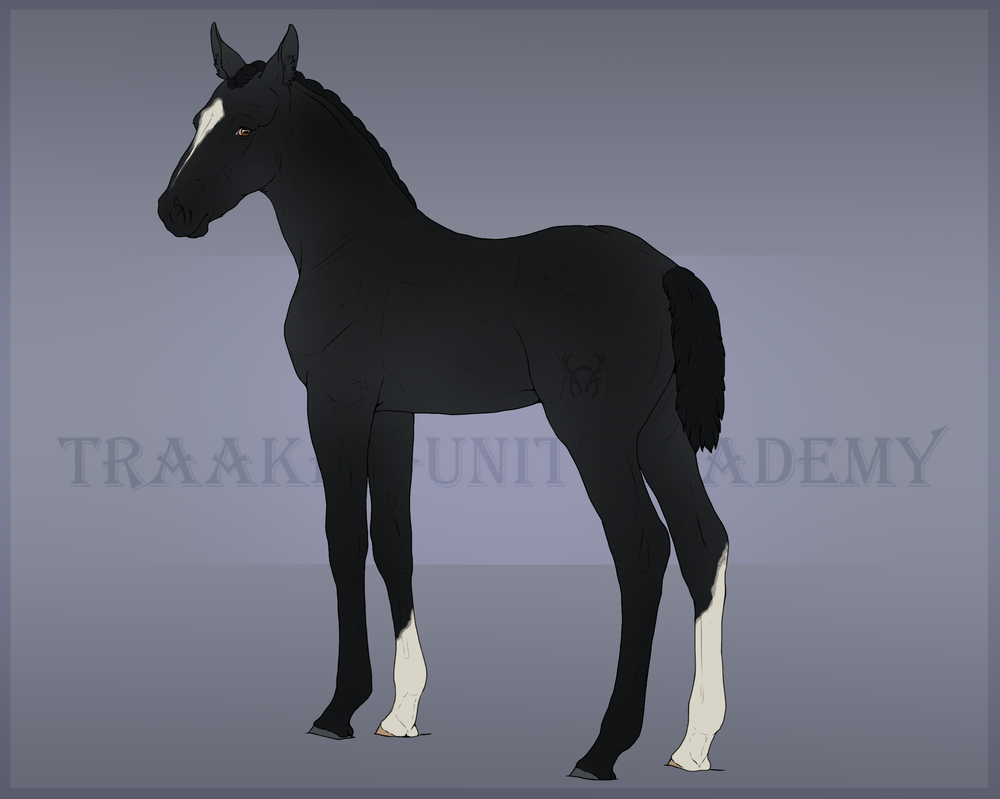 Renegade - Foal Design by CalyArt