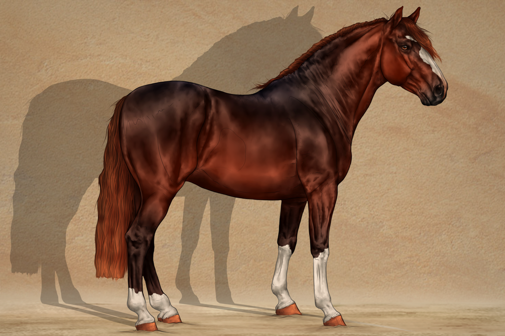 SWS Galante by CalyArt
