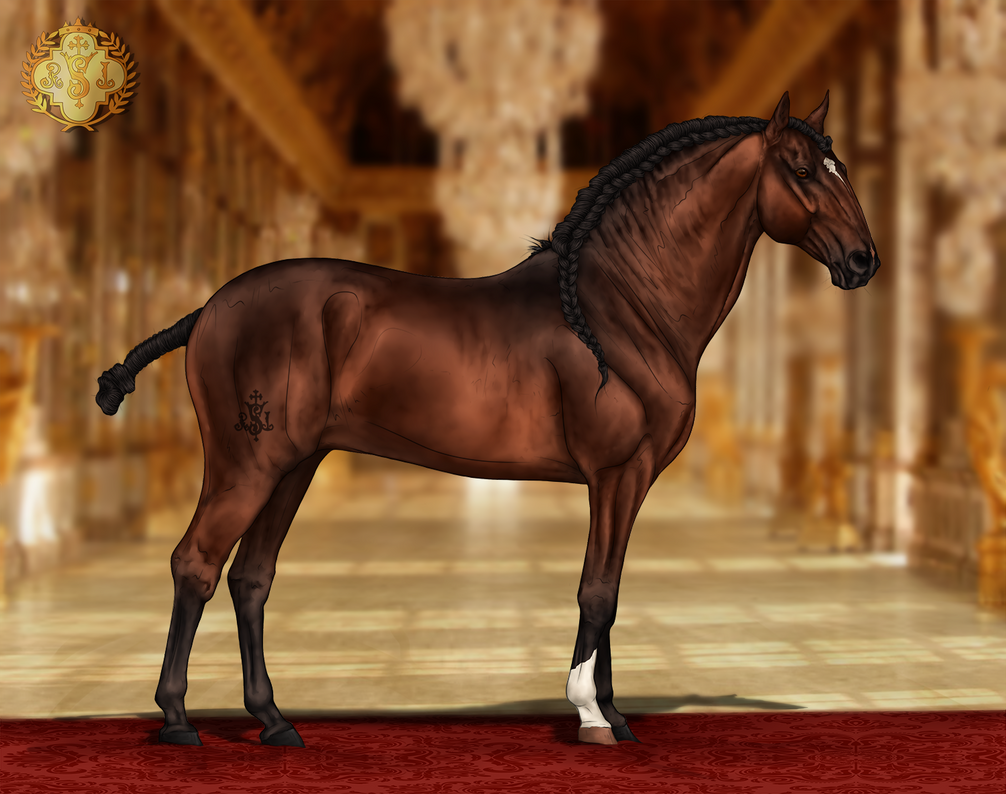 RSI Gracioso do Royal by CalyArt