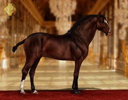 RSI Abastado do Royal by CalyArt