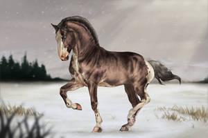 ~ Dancing Winter ~ by CalyArt