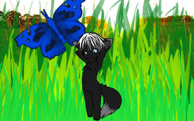 Micro Fox