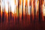 fiery delirium