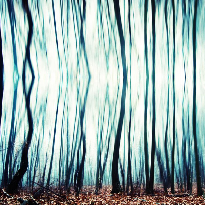 within by DavidSchermann