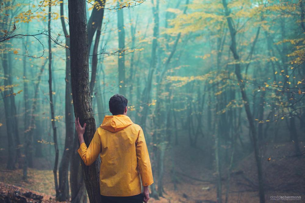 Der Wanderer und der Nebel (2) by DavidSchermann