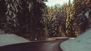 come wander by DavidSchermann