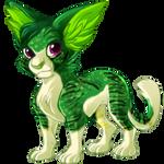 Ivy Tiger