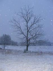 Snowy Night by LawnyJ