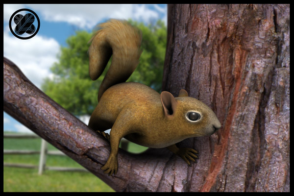 Squirrel Model by 3dmodeling