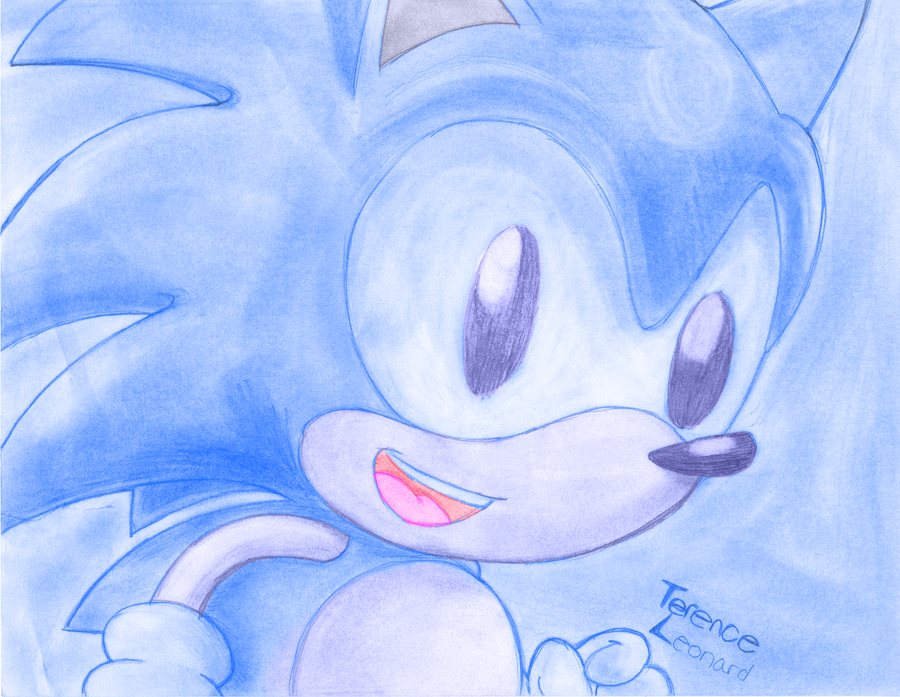 Blue Hedgehog by SonicKnight007