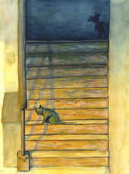a cat on stairs