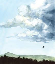 Cloud and bird