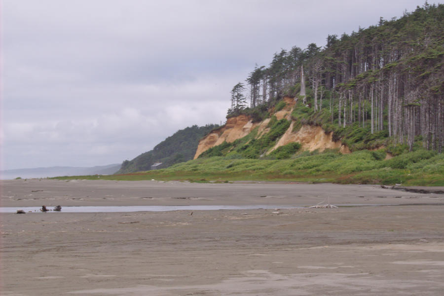 Pacific Coast Washington by Speck2