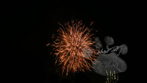 Fire Works by Wolfpack5554