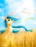 Pony Ukraine