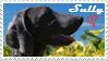 Sully Stamp by sVa-BinaryStar
