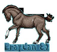 Braydan 82 Tag by sVa-BinaryStar