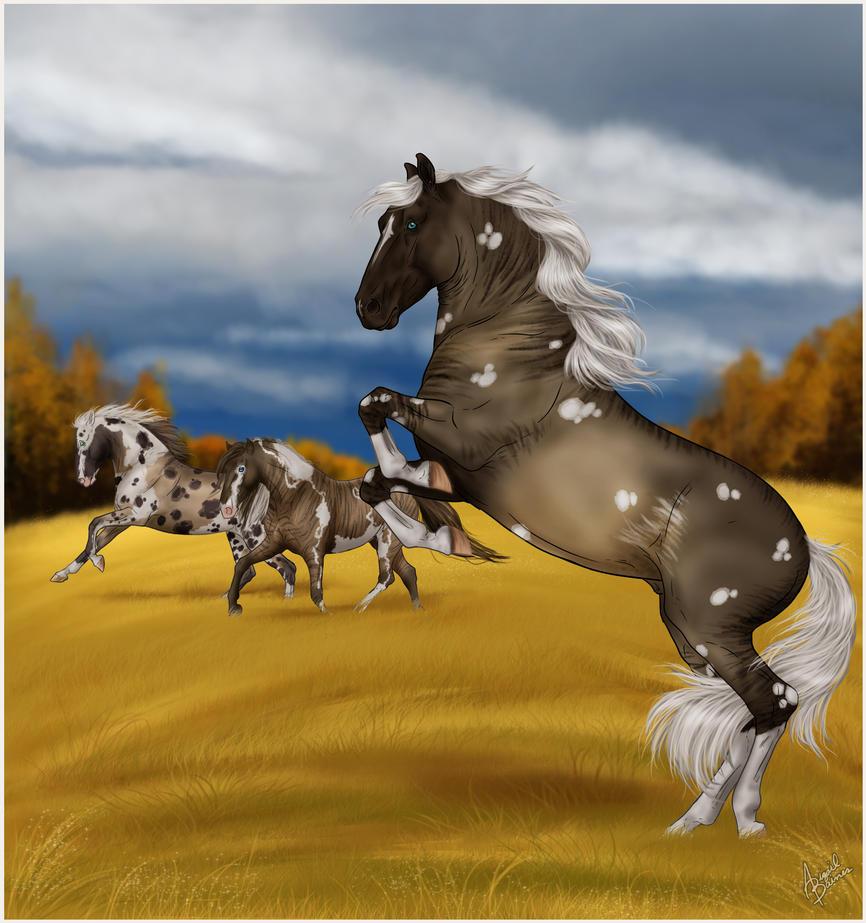 Autumn's Racers by sVa-BinaryStar