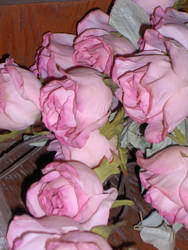 Stock 016 - Silk Roses by pink-stock