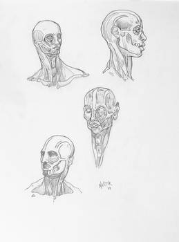 Skizzen Kopf