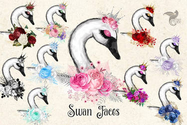 Swan Faces by DigitalCurio
