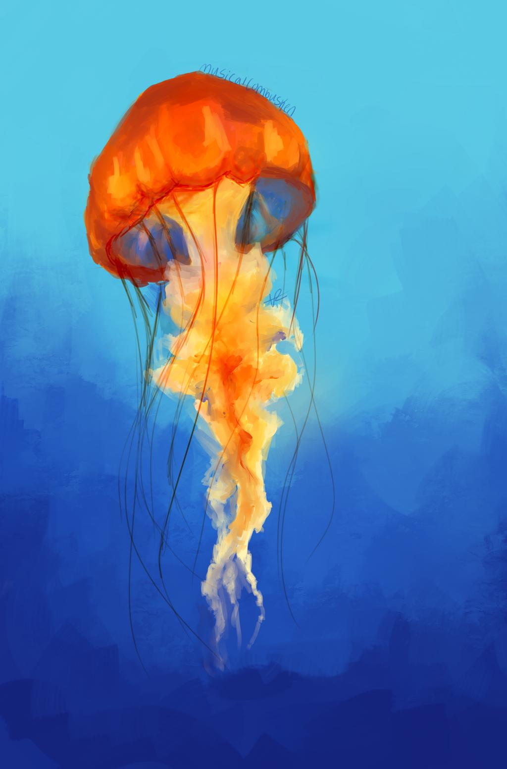jellyfish by musicalcombusken on deviantart