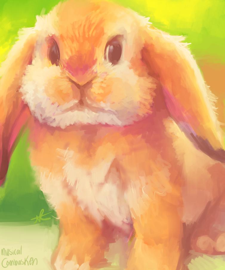 Speedpaint Bunny by MusicalCombusken