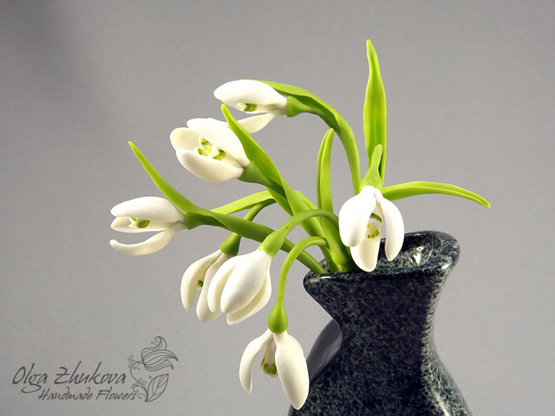 snowdrops by polyflowers