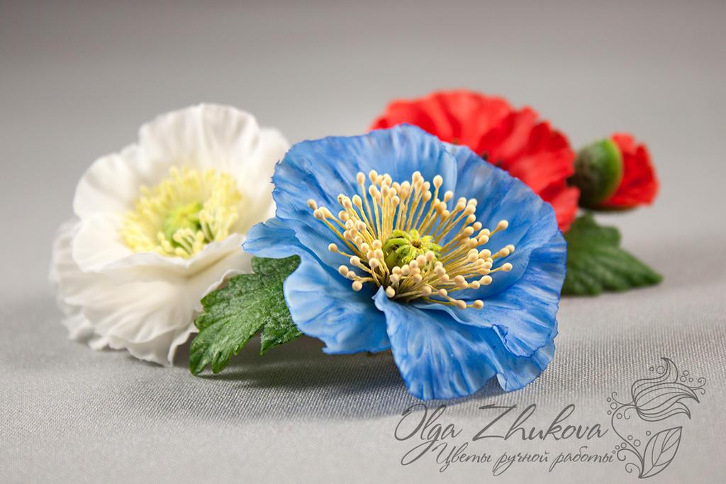 Poppy by polyflowers