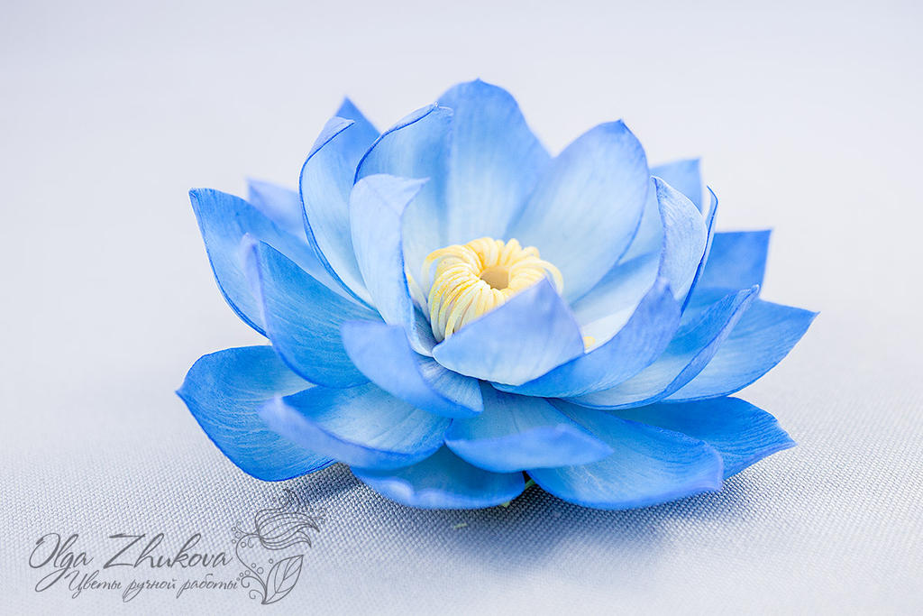 Hair clip with a flower of blue lotus by polyflowers on deviantart hair clip with a flower of blue lotus by polyflowers mightylinksfo Image collections