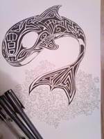 Orca by gyerase