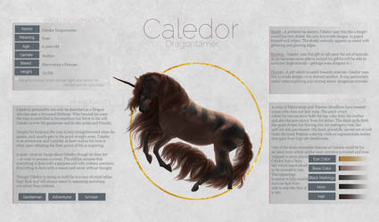 Caledor Dragontamer by zeni-graphics