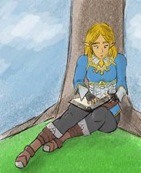 Reading Zelda