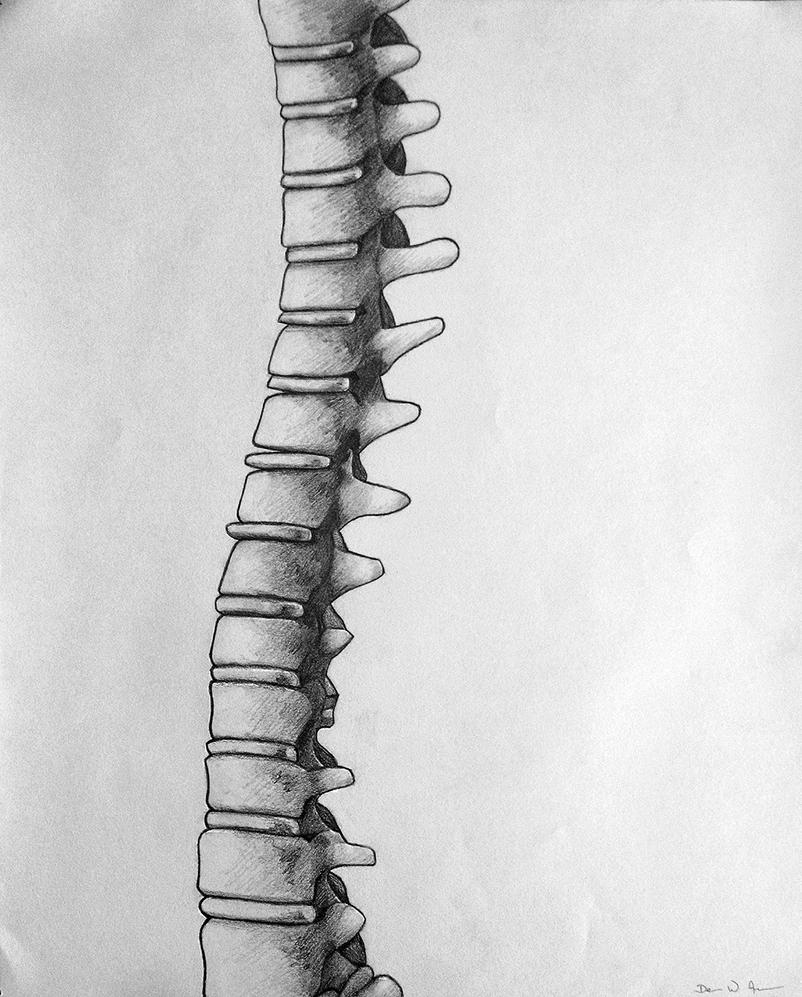 Spine by DevanAmesArt