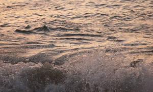 Splish Splash by jerseybrat