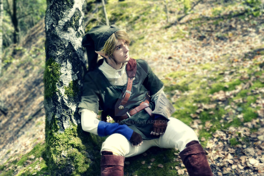 Link Cosplay #1 by Laovaan