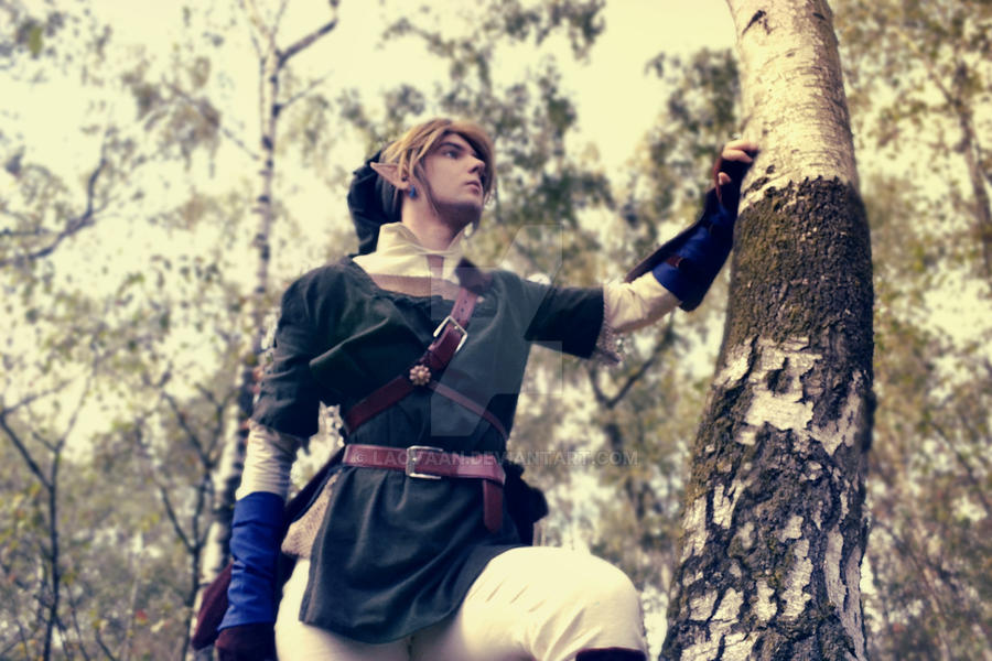 Link Cosplay #4 by Laovaan
