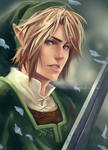 Twilight Princess - Link