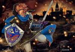 Collab with TiuanaRui: Link Hyrule Warriors