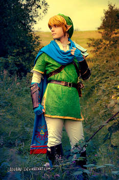 Link - Hyrule Warriors Cosplay