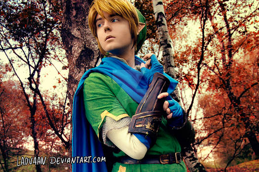 Link - Hyrule Warriors Cosplay #2