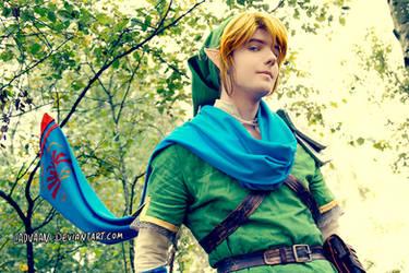 Link - Hyrule Warriors Cosplay #3