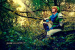 Hyrule Warriors - Link Cosplay