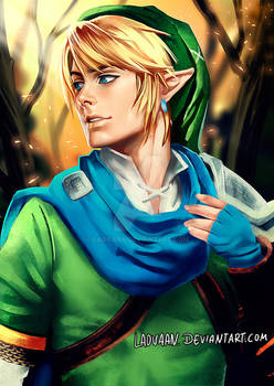 Link Hyrule Warriors - Painted Cosplay