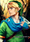 Link Hyrule Warriors - Painted Cosplay