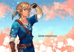 Breath Of The Wild Link - Painted Cosplay