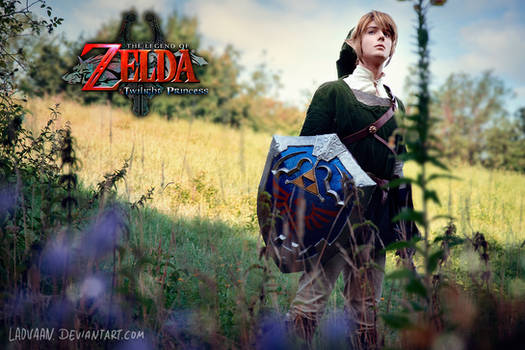 Link Cosplay Twilight Princess